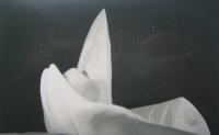 163_arch-phan-skulptur-kirche_v2.jpg
