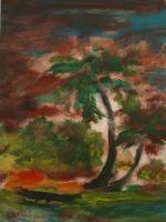 8_kanu---palmen.jpg